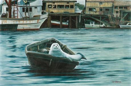 Saul the Seal