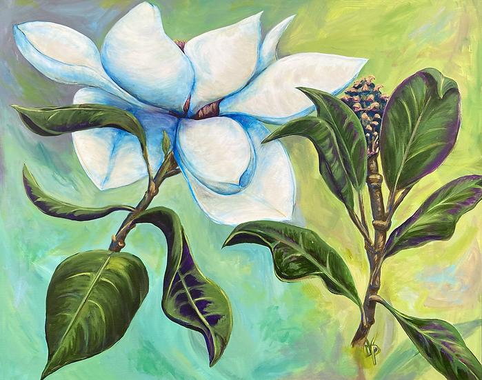 Royal Magnolia