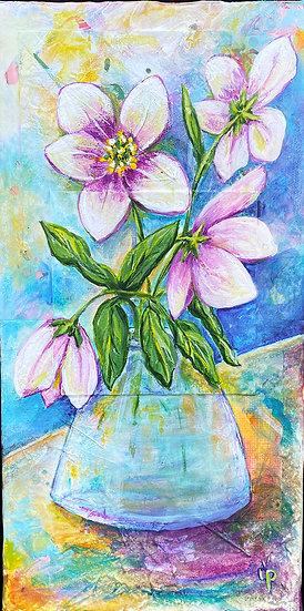 From the Garden : Lenten Rose