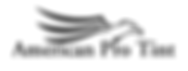 apt new logo (1).png