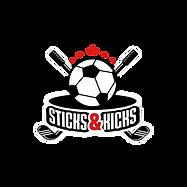 ENVIAR - LOGO - Stick and Kicks (palos y patadas)_01.png