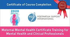 MMHCertificate Training logo.jpg