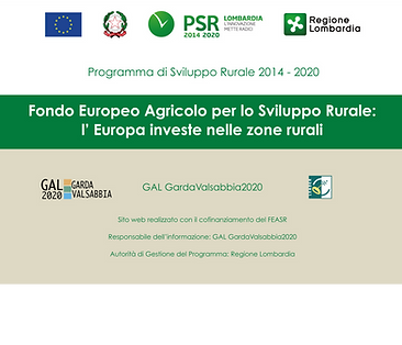targa_informativa_PSR_sito_web_leader.pn