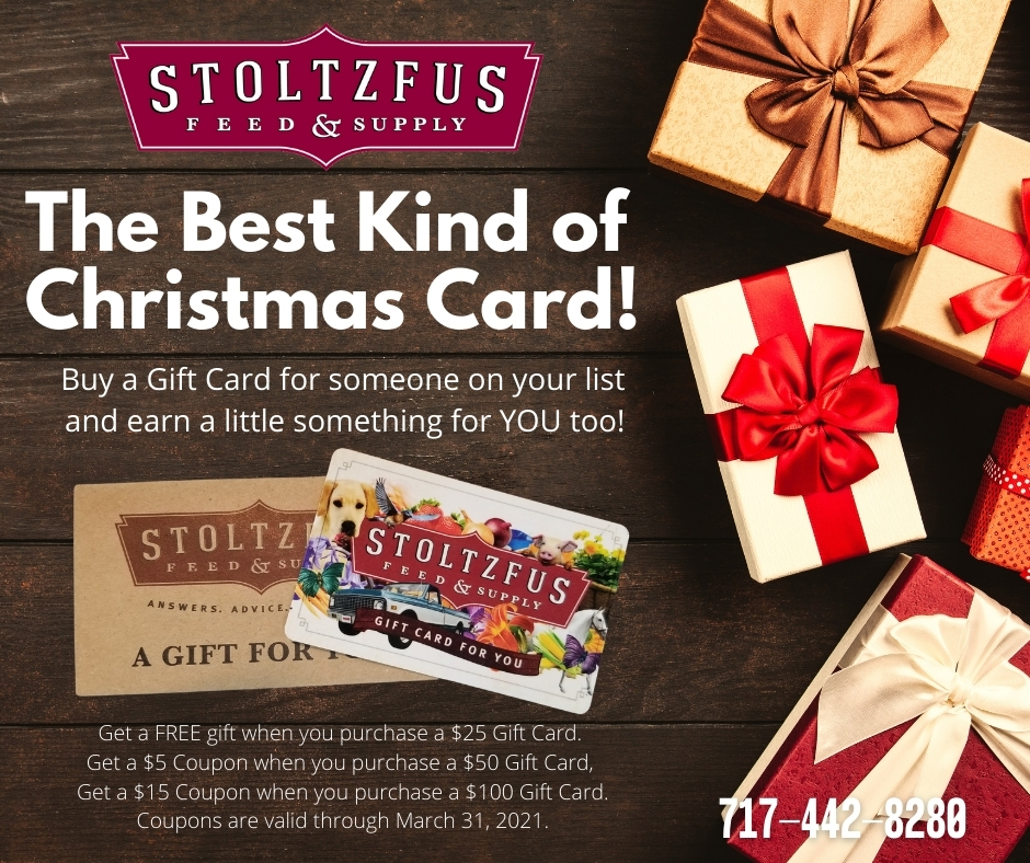 Ad for Gift Card