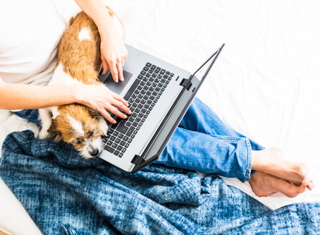 How to Win at #WFH