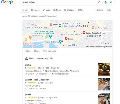 Google My Business Palma Example.JPG