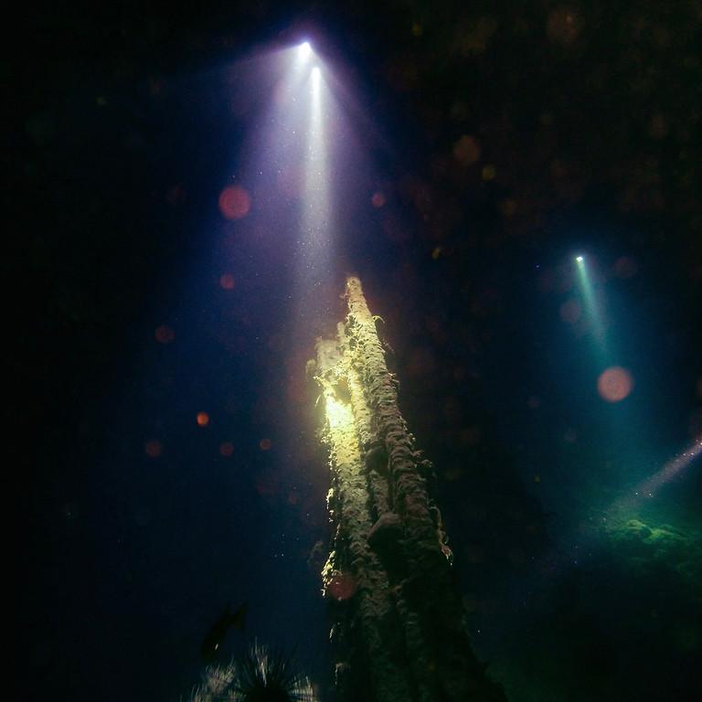 Full Moon Night Dive