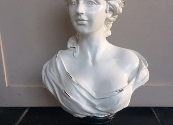 borstbeeld vrouw plastic