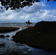 NORTH AMERICA  |  KAUAI