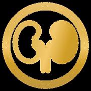 Icono de Nefrología