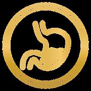 Icono de Gastro