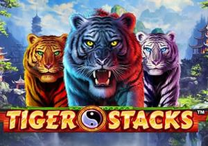 Newtown Tiger Stacks