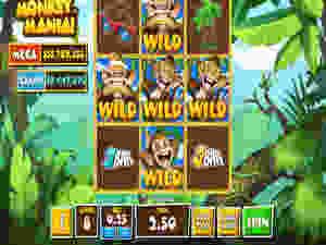Monkey Mania Newtown