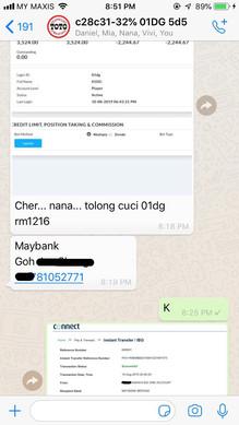 Kuda Toto_WhatsApp