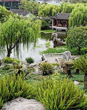 Chinese Gardens.jpg