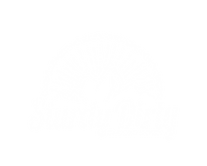 SDES Logo white.png