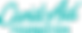 cand-aid-logo-teal.png