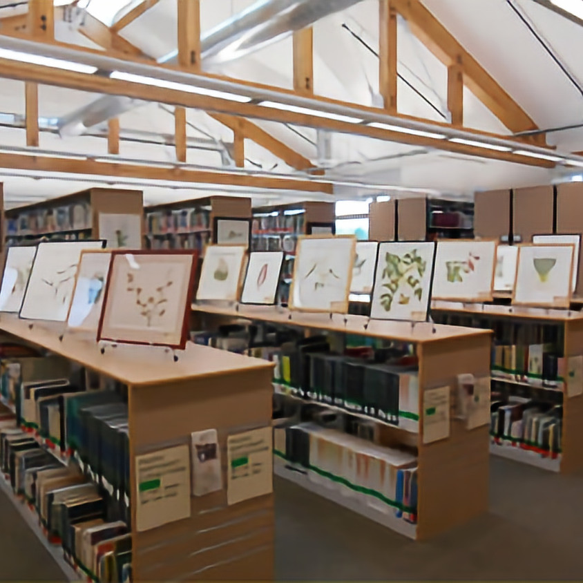 Library Tour: Elisabeth C Miller Library, curated by Brian Thompson