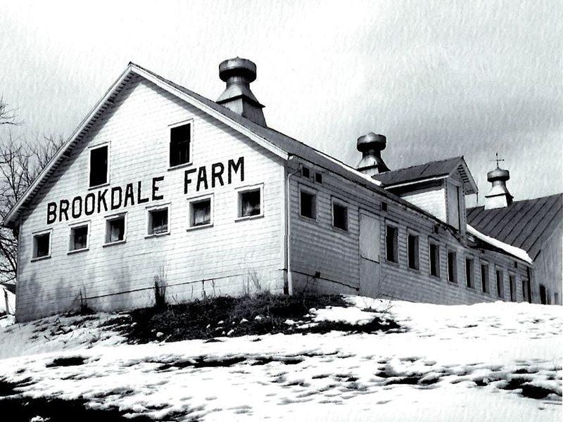 Manton's Farm
