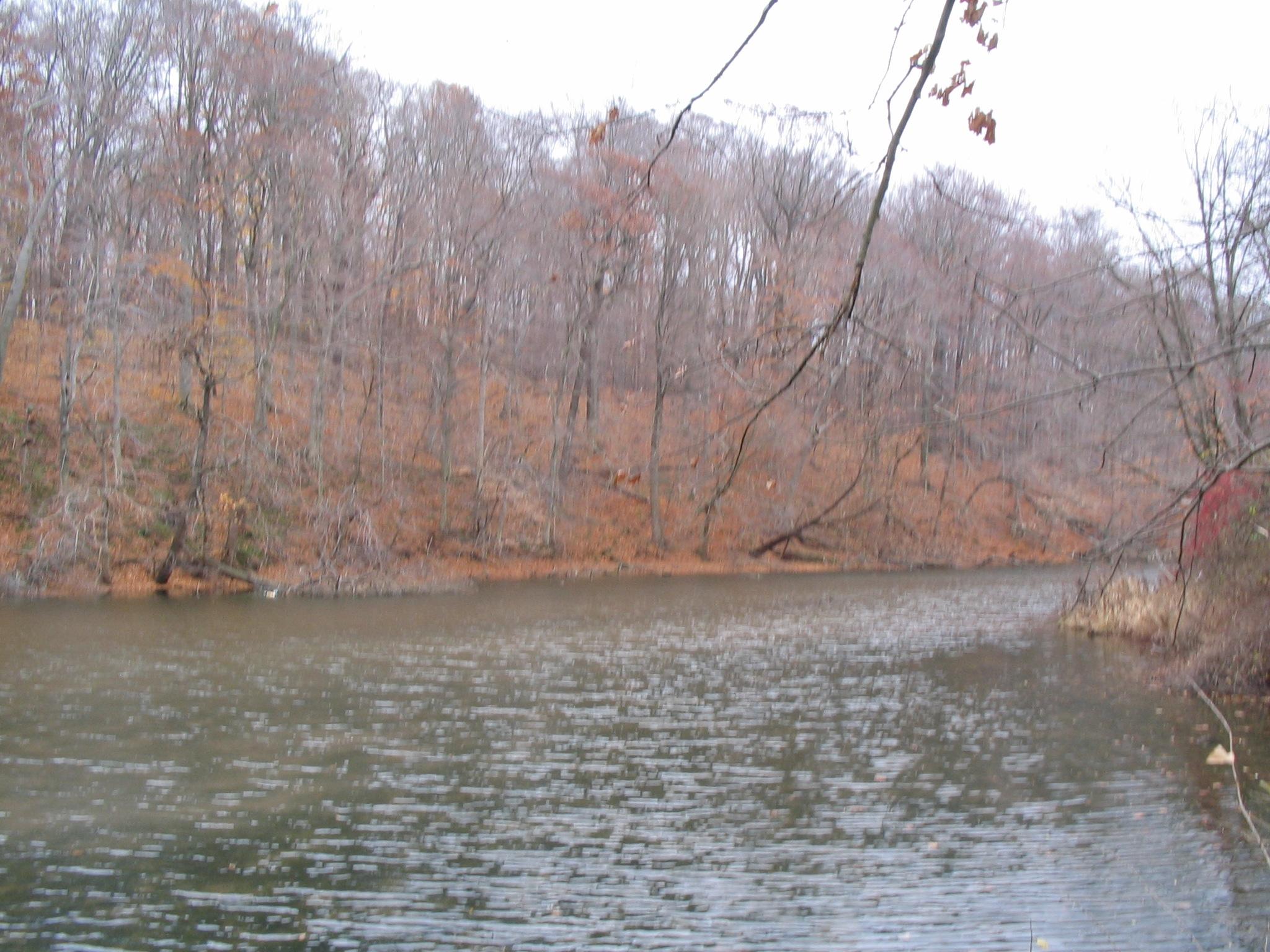 Hopkins Mill Pond
