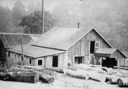 Hopkins Lumber Mill