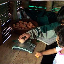 amalaka 2007_Bilder_Seite_3.jpg