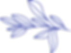 Blue PMD Icon.png