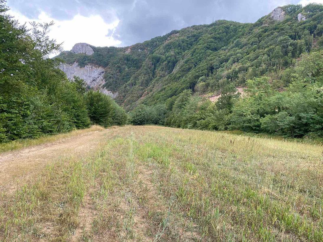 Land near Tara river   Montenegro
