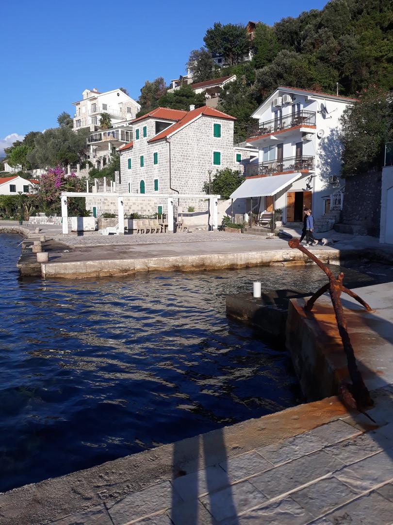 Rose Montenegro - Good investment