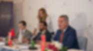 ICD fund   G.E - Montenegro
