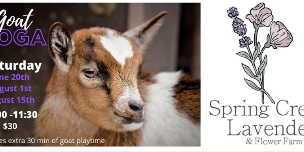 Goat Yoga- July 10th