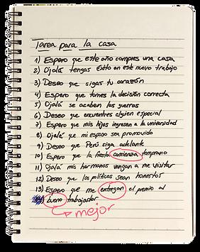 cuaderno1_edited.png