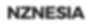 nznesia logo.PNG