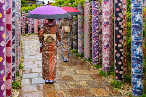 Walk in the Kimono Forest
