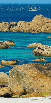 Potfolio Coastline 2x1.jpg