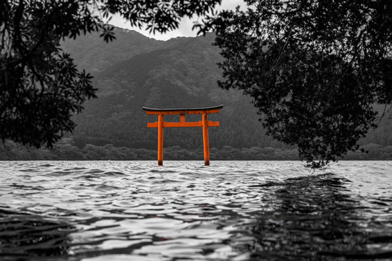 Torii on Ashi Lake