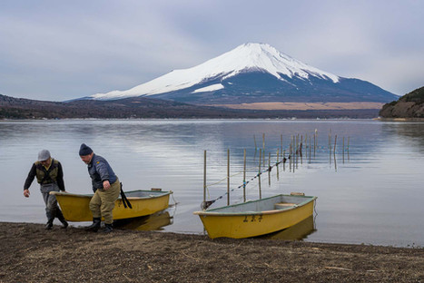 Fishermen on Yamanakako Lake