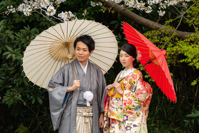 Japan a Land of Tradition and Modernity