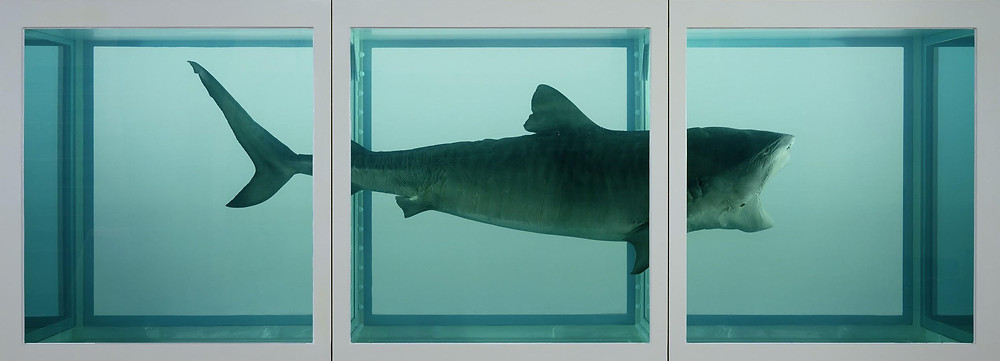 Damien Hirst ~ The Physical Impossibility of Death in the Mind of Someone Living