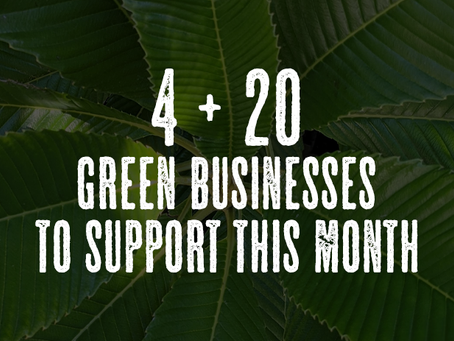 4 + 20 green businesses to support this month