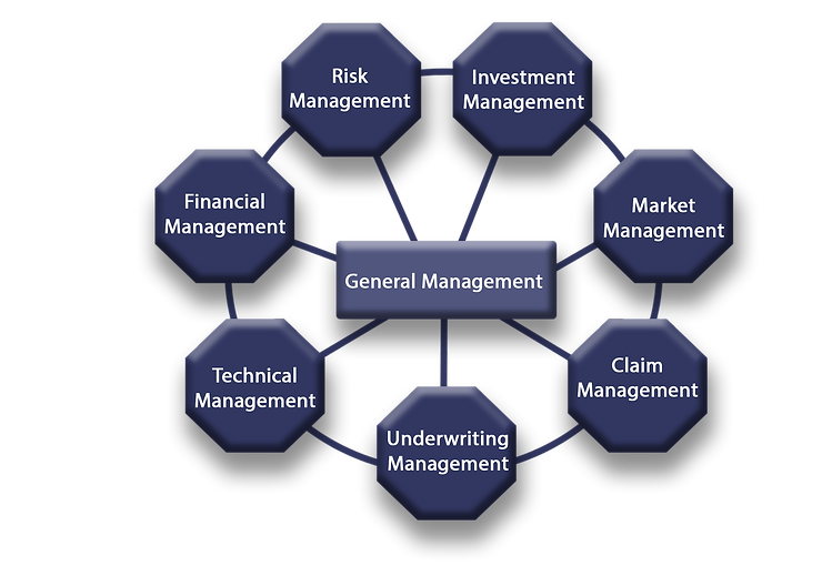 Insurance & Reinsurance - Management.png