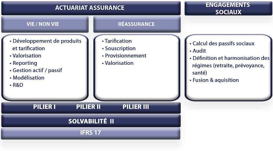 Conseil & Audit.jpg