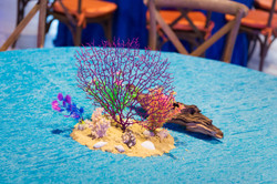 coral reef_under the sea event_myrtle be
