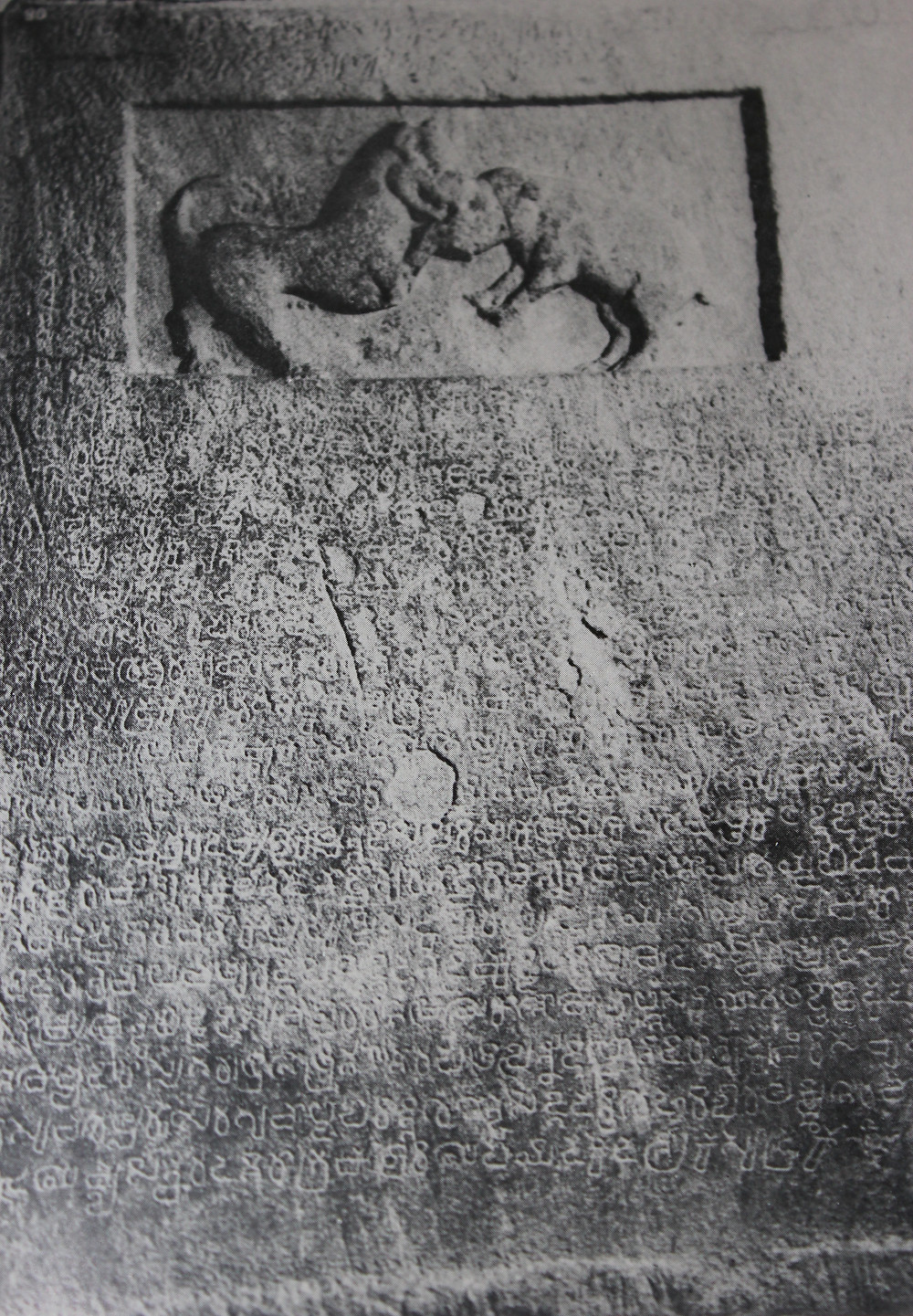 The Atukur hero-stone (viragal) of Kali the dog, now in the Bangalore Museum