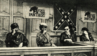 YOUNG PATRIOTS AND PANTHERS: A STORY OF WHITE ANTI-RACISM