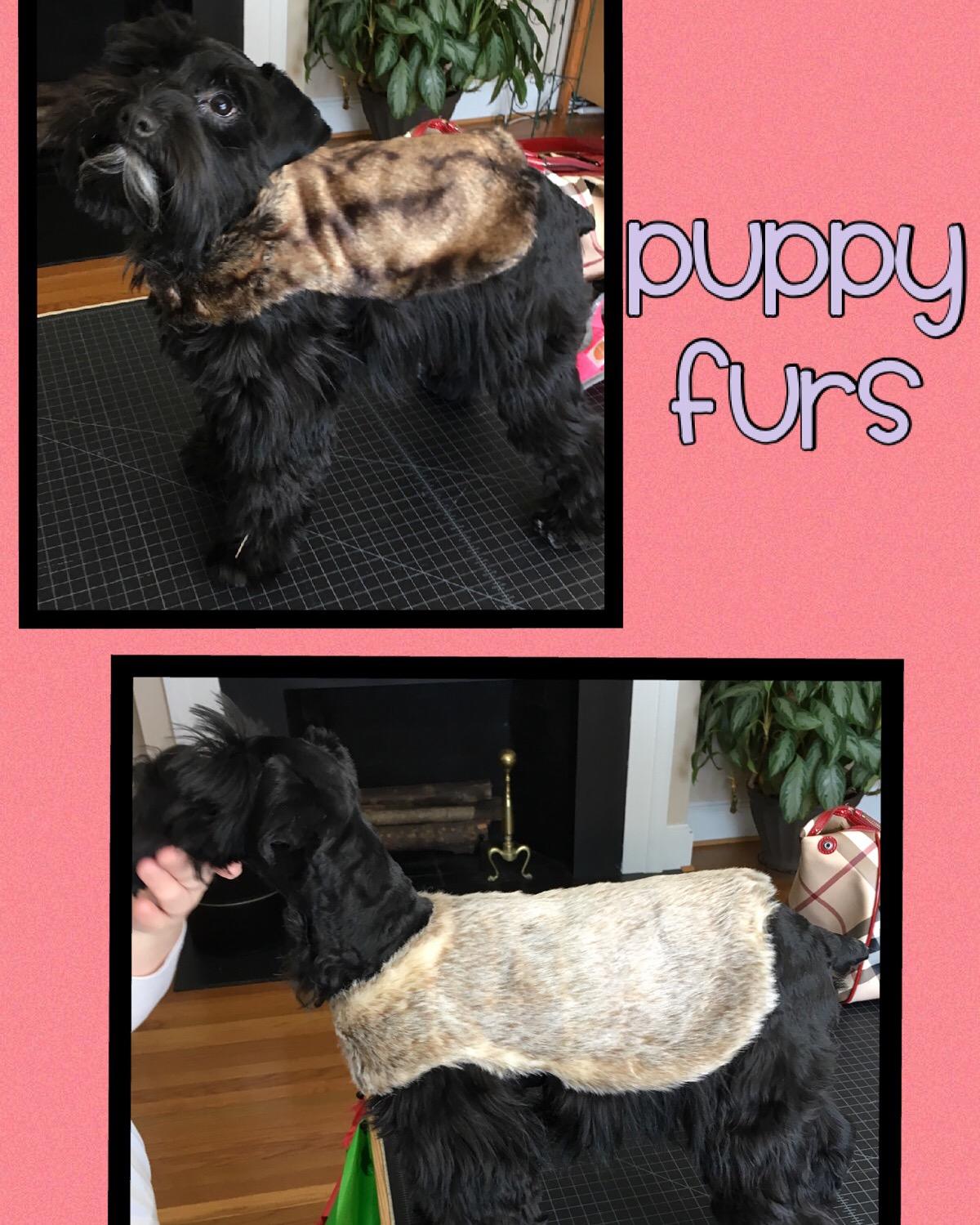 Puppy Furs