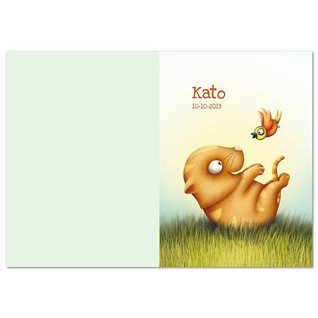 Thumb kaart dubbel verticaal Kato 1.jpg