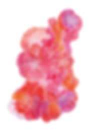 bloementekening-roze-A3.png