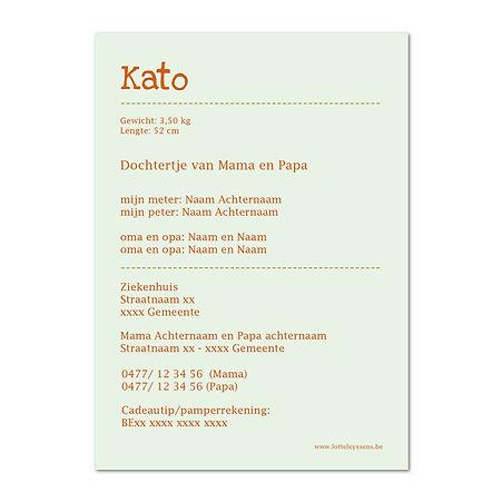 Thumb kaart enkel verticaal Kato 2.jpg
