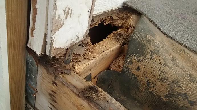 Deck Builders Near Oakdale MN